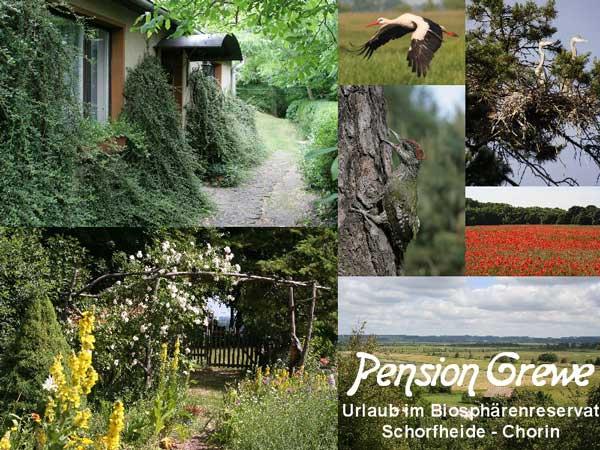 Pension Grewe - Urlaub im Biospärenreservat Schorfheide-Chorin